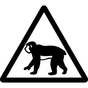 猿 サル さる 注意マークのカッティングシートステッカー