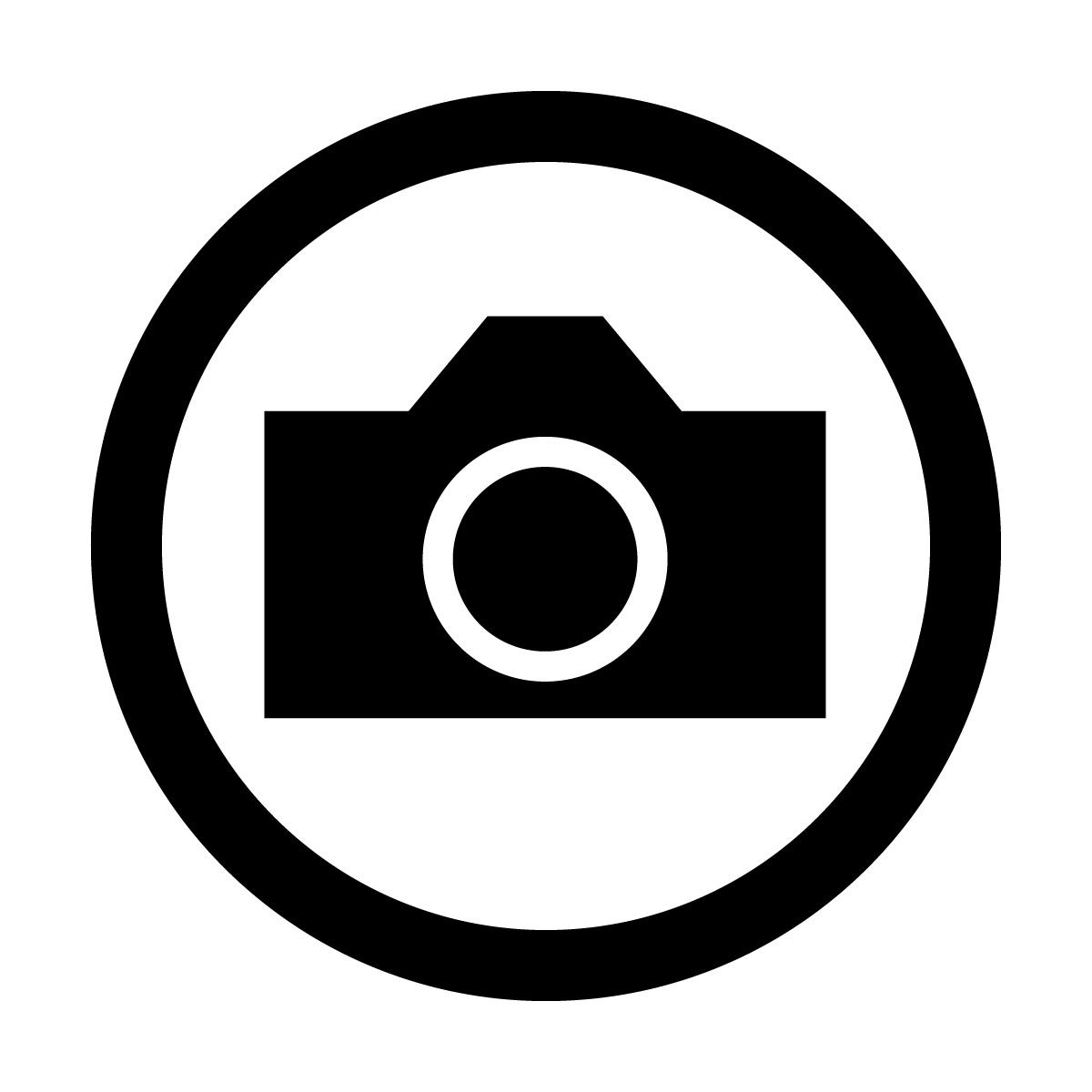黒い撮影を許可するマークのカッティングステッカー