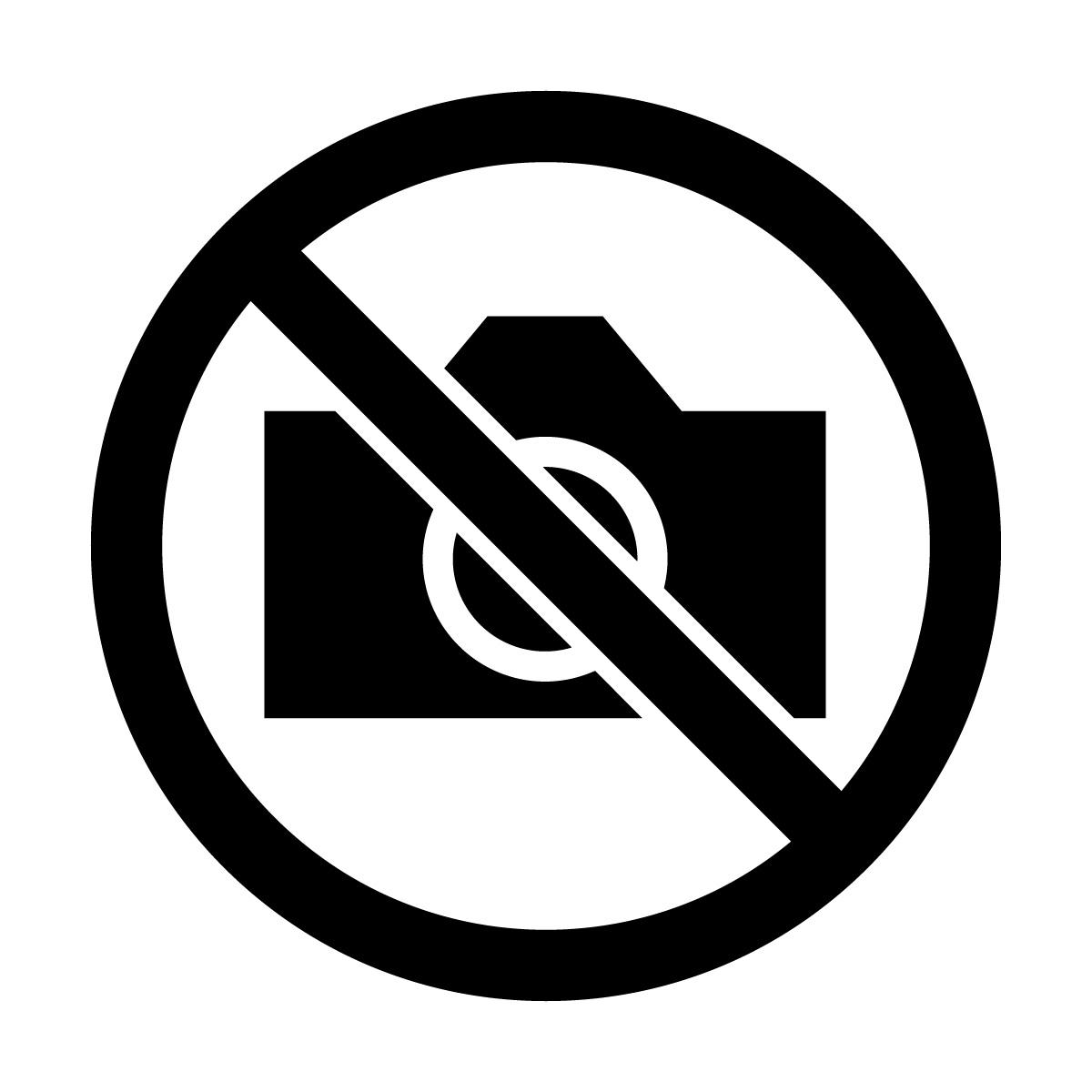 黒色の撮影禁止マークのカッティングステッカー・シール 光沢タイプ・防水・耐水・屋外耐候3~4年