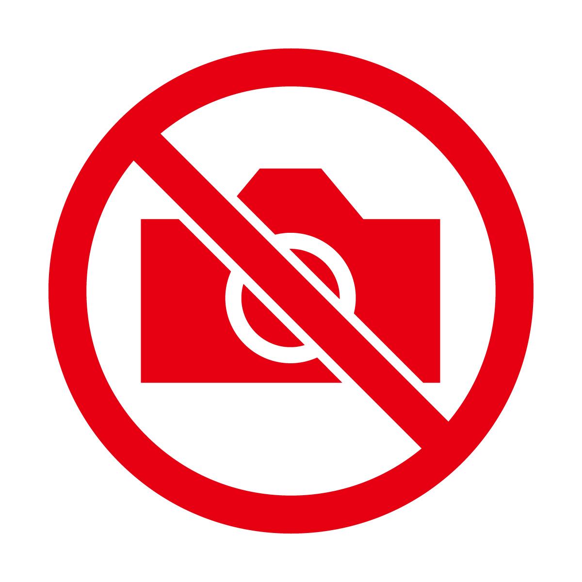 赤色の撮影禁止マークのカッティングステッカー・シール 光沢タイプ・防水・耐水・屋外耐候3~4年
