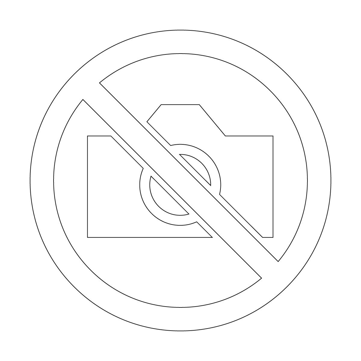 白色の撮影禁止マークのカッティングステッカー・シール 光沢タイプ・防水・耐水・屋外耐候3~4年