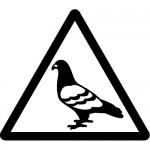 ハトのフン注意標識のカッティングステッカーシール